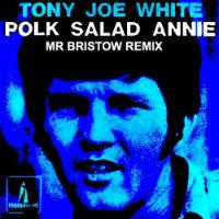 Polk Salad Annie Mr Bristow remix