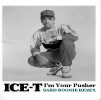 I'm Your Pusher remix Sard Boogie Ice T