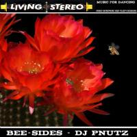 DJ PNUTZ: Bee-Sides (2017)