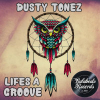 Life's A Groove Dusty Tonez