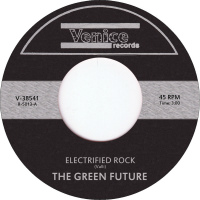 Electrified Rock Green Future