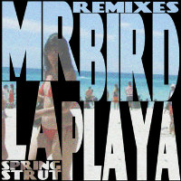 La Playa Remixes Mr Bird
