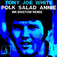 Polk Salad Annie Mr Bristow remix