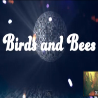 Birds And Bees Third Coast Kings