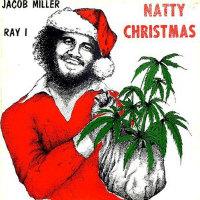 Reggae Christmas Lunchbox