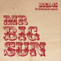 Mr Big Sun Boca 45