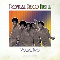Tropical Disco Hustle Vol 2