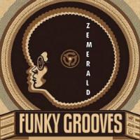 Gotta Be Funky Zemerald