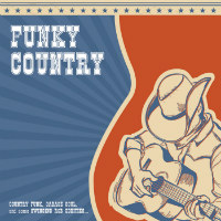VARIOUS:  Funky Country (Vinyl LP)