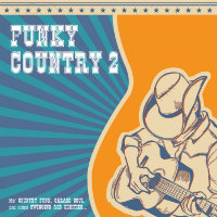 VARIOUS: Funky Country 2 (Vinyl LP)