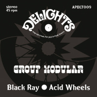 GROUP MODULAR:  Black Ray b/w Acid Wheels (Vinyl 7