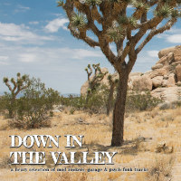 VARIOUS:  Down In The Valley