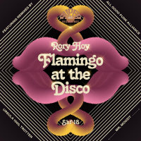 RORY HOY:  Flamingo At The Disco