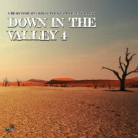 PERFECT TOY RECORDS: Down In The Valley 3 & 4
