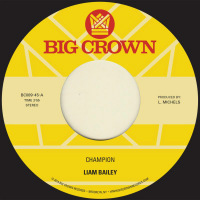 LIAM BAILEY: Champion (Vinyl 7