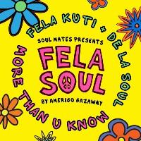 Fela Soul More Than You Know 10th Anniversary remix